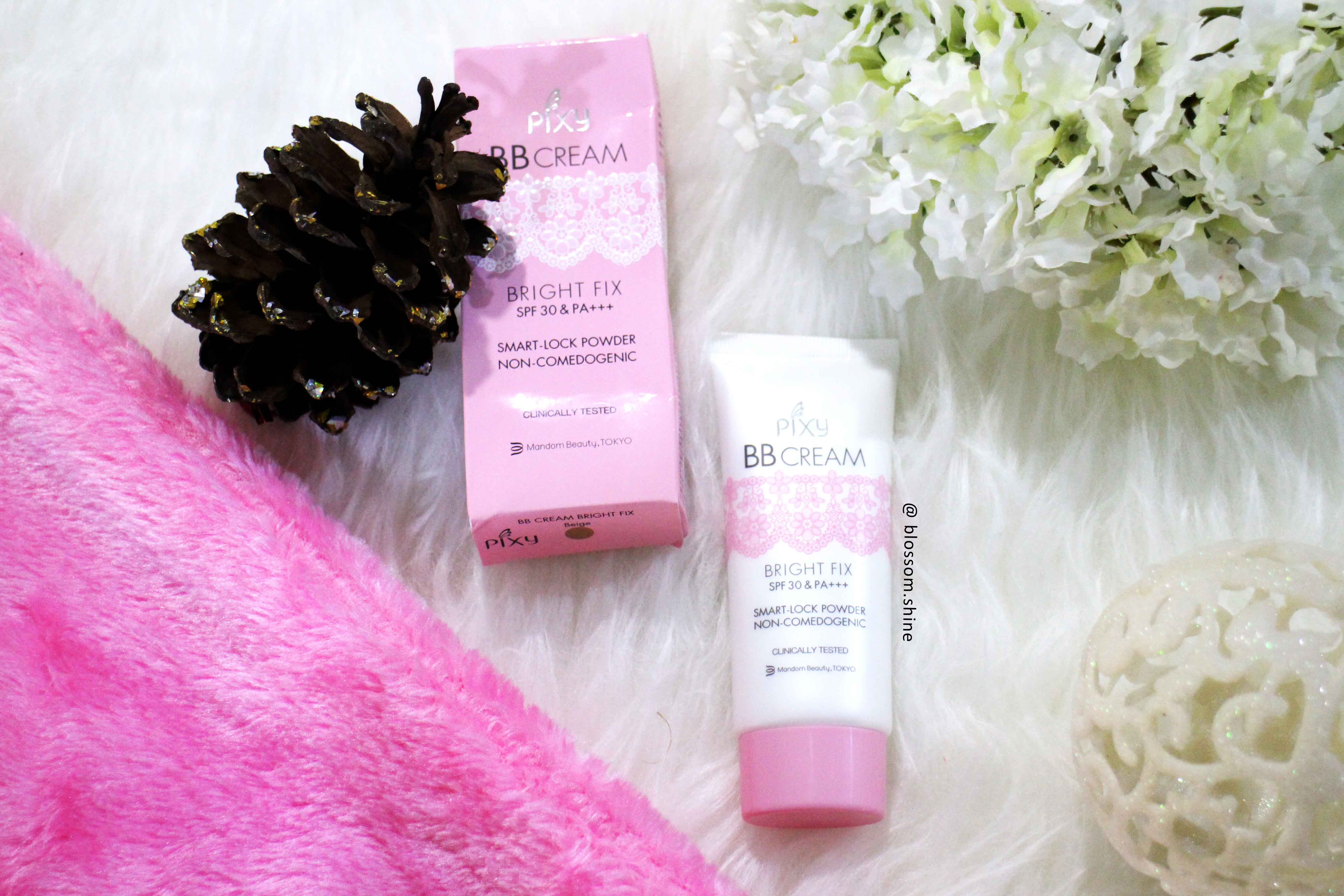 Face Makeup For Oily Skin 2: Pixy BB Cream [Makeup Review]